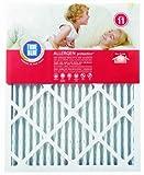 True Blue Allergen 12x36x1 Air Filter , MERV 11, 4-Pack