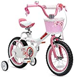 Royalbaby Girls Bike Jenny 20 Inch Girl's Bicycle With Kickstand Basket Child's Cycle Pink