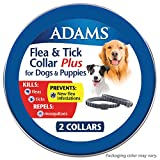 Adams Flea & Tick 2PK Collar for Large Dogs Grey One Size
