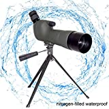 Marmot Spotting Scope 20-60x60AE High Magnification Monocular BK-7 Prism Rubber Eyepiece Telescope with Tabletop Tripod for Bird Watching Observing Outdoor Sports