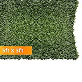 PZG 1-inch Artificial Grass Patch w/Drainage Holes & Rubber Backing | 4-Tone Realistic Synthetic Grass Mat | Heavy & Soft Pet Turf | Lead-Free Fake Grass for Dogs or Outdoor Décor