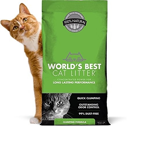 Best Clumping Cat Litters For Odor Control 8. World's Best Cat Litter Clumping Formula