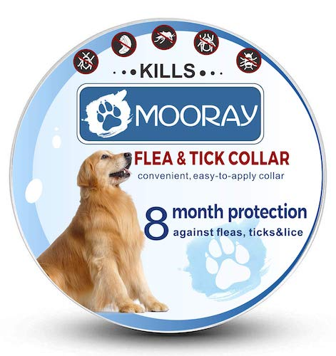 8. Flea and Tick Collar Prevention for Dogs & Cats Control for 8 Months with Natural Ingredients-Adjustable Waterproof Design by MOORAY
