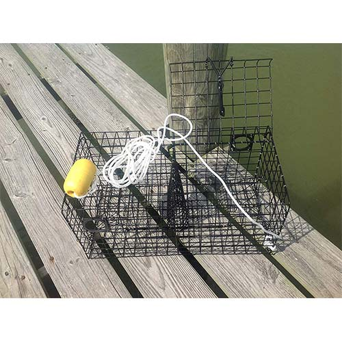 1. Maryland Blue Crab Pot Trap Chesapeake Atlantic Blue Crab