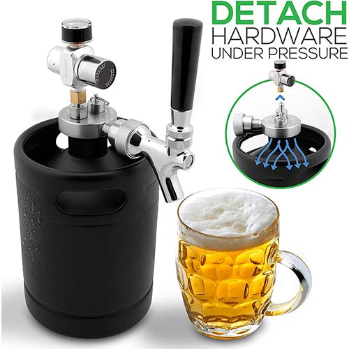 Top 10 Best Pressurized Growlers in 2020 Reviews